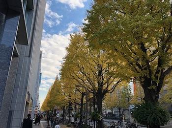 2019Dec1-Kouyou1 - 1.jpeg