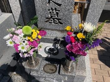 2019Mar24-Ohaka - 1.jpg