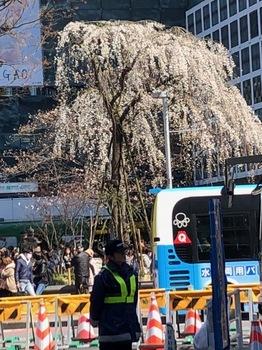 2019Mar24-Shibuya - 1.jpg