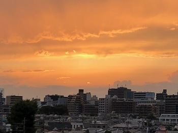 2020Jun28-Sunset - 1.jpeg