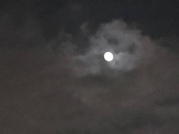 2020Nov3-Moon - 1.jpeg