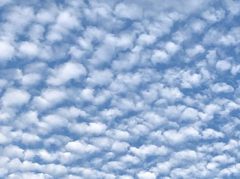 2020Nov6-Sky2 - 1.jpeg