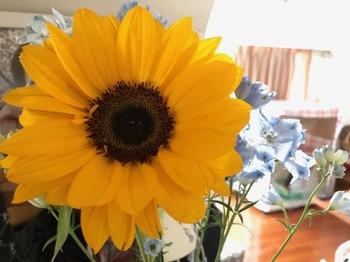 2021Apr25-Flower1 - 1.jpeg