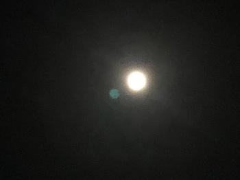 2021Feb27-Moon1 - 1.jpeg