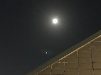 2021Feb27-Moon2 - 1.jpeg