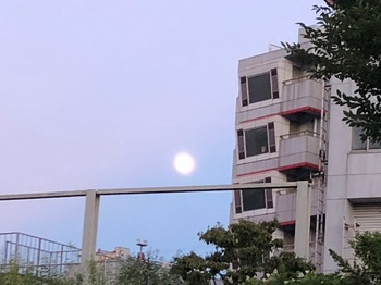 2021Jul22-Moon1 - 1.jpeg