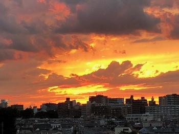 2021Jun20-Sunset1 - 1.jpeg
