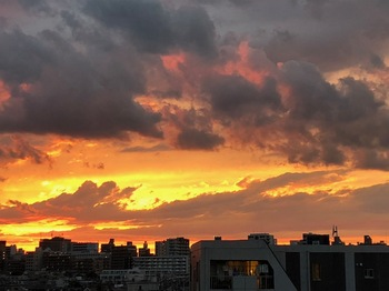 2021Jun20-Sunset3 - 1.jpeg