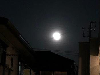 2021Mar29-Moon2 - 1.jpeg