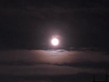 2021May25-Moon1 - 1.jpeg