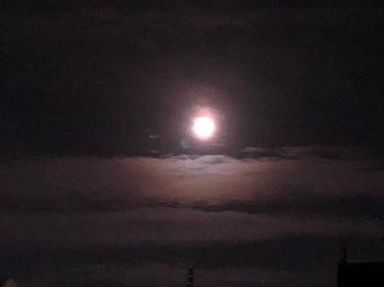 2021May25-Moon2 - 1.jpeg