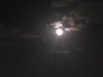 2021Sep21-Moon2 - 1.jpeg